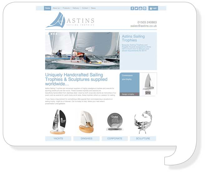 astins-website-design