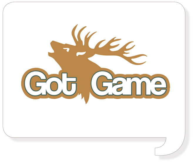 Gotgame Logo Logo Design