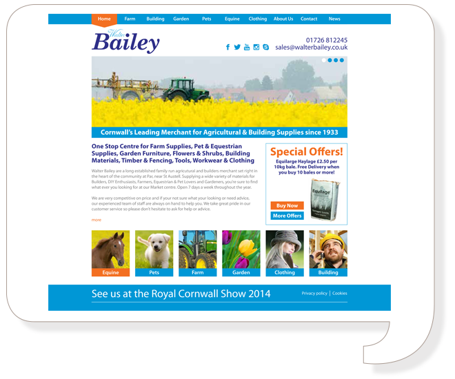 Walter Bailey Website Design
